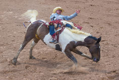 Gallup, Indian Rodeo Royalty Free Stock Photography