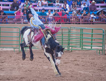 Gallup, Indian Rodeo Stock Photo