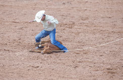 Gallup, Indian Rodeo Stock Images