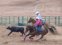 Gallup, Indian Rodeo Stock Photography
