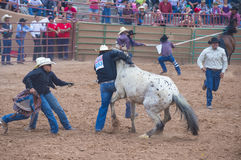 Gallup, Indian Rodeo Stock Photos