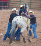 Gallup, Indian Rodeo Stock Image