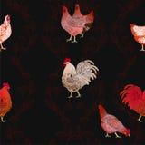 Galo e galinhas Fundo sem emenda do vetor Imagem de Stock