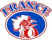 galo francês france da mascote Imagens de Stock