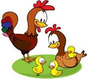 Galo, galinha e desenhos animados das galinhas Fotografia de Stock