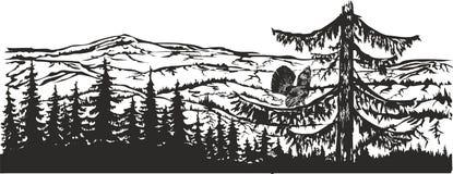 Galo silvestre de madeira na floresta ilustração do vetor