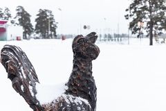 Galo silvestre de madeira no inverno Uma estátua de madeira de um pássaro com uma cauda, um galo silvestre preto está fotos de stock royalty free