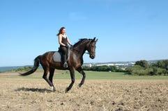 Galope. Caballo y equestrienne. Foto de archivo libre de regalías