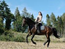 Galope. Cavalo e equestrienne. Imagens de Stock Royalty Free