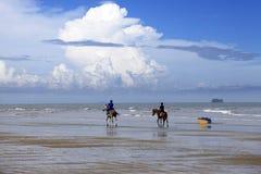 Galope na praia Imagens de Stock