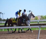 Galoper de chevaux de course et de jockeys Images stock