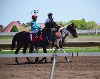 Galoper de chevaux de course et de jockeys Image stock