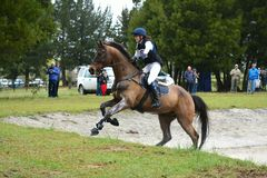 Galoppare del cavallo di concorso completo Fotografie Stock Libere da Diritti