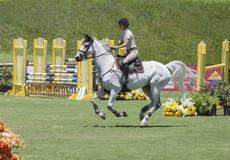 Galopperend Paard op Jumper Field Royalty-vrije Stock Foto's