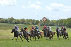 Galopperende paardenkoers stock afbeeldingen