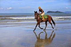 Galoppo sulla spiaggia Fotografia Stock