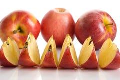 Galowi jabłka Obraz Royalty Free