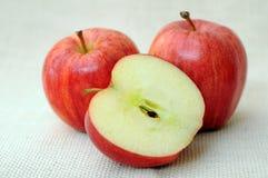 Galowy jabłko obrazy stock