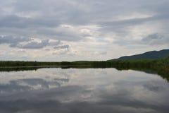 Galowy jeziorny park narodowy Edirne, TÃ ¼ rkiye Obrazy Royalty Free
