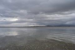 Galowy jeziorny park narodowy Edirne, TÃ ¼ rkiye Obraz Stock
