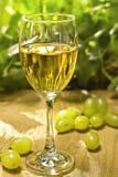 Galss do vinho branco Imagens de Stock
