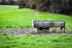 Galvanised cattle drinking trough. Galvanised steel drinking trough for cattle in a grazing paddock; seated on a concrete plinth royalty free stock photos