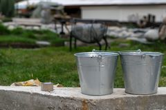 Galvanized buckets on the territory of the dacha royalty free stock photos