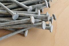 Galvanized Nails Stock Photography
