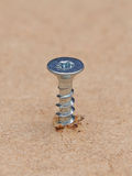 Galvanized screw. Closeup of a galvanized screw fastened in wooden material Royalty Free Stock Photos