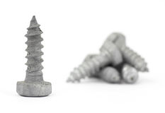 Galvanized steel lag bolts Stock Photos