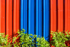 Galvanized steel wall and green plant Stock Photos