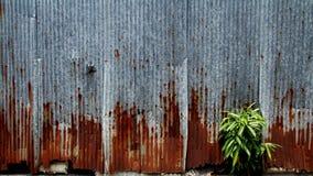 Galvanized wall Royalty Free Stock Photos