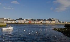 galway Ирландия Стоковые Фотографии RF