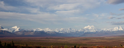 Gama de Alaska en Denali Imágenes de archivo libres de regalías