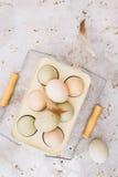 Gama libre, huevos orgánicos del pollo de las gallinas del araucana Fotografía de archivo libre de regalías
