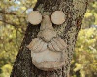 Gamal man i trädet Arkivbild