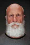 Gamal man med ett långt vitt skägg Royaltyfri Fotografi