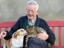 Gamal man med hunden och katten Royaltyfri Foto