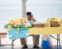 Gamal man som säljer svampen Arkivbild