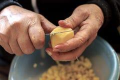 Gamal man som skivar potatisar royaltyfria foton