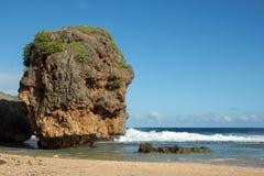 Gamal man vid havet i den Saipan ön Fotografering för Bildbyråer
