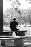 Gamal mansammanträde på en bänk i en Chicago parkerar royaltyfri bild