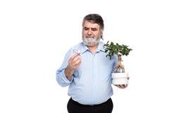 Gamala män med grått hår som har det lilla trädet i händer royaltyfri fotografi