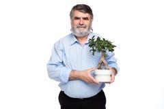 Gamala män med grått hår som har det lilla trädet i händer royaltyfria foton