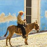 Gamala män sitter på en åsna på kullerstengatan av Trinidad i Kuba Arkivfoto