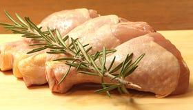 Gamba di pollo Fotografia Stock