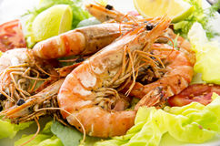 Gamba Salad Royalty Free Stock Image