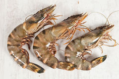 Gambas Stock Photos