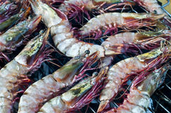 Gambas on barbecue Royalty Free Stock Photography