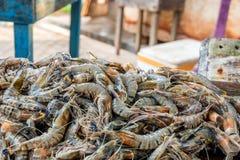 Gambas del tigre en el fishmarket asiático Fotos de archivo libres de regalías